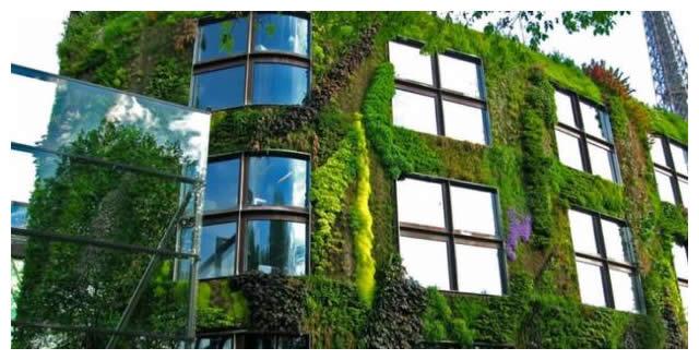 Descripci n de la forma correcta en que se construye un for Como se construye un jardin vertical