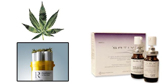 Marihuana negocios