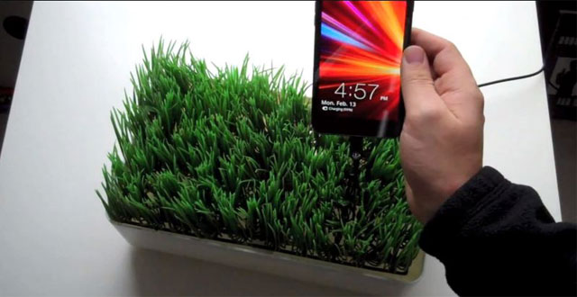 Grassy Lawn Charge Station