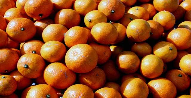 Descubre naranjas caracteristicas
