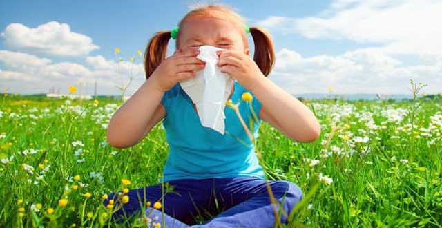 Causas fiebre heno