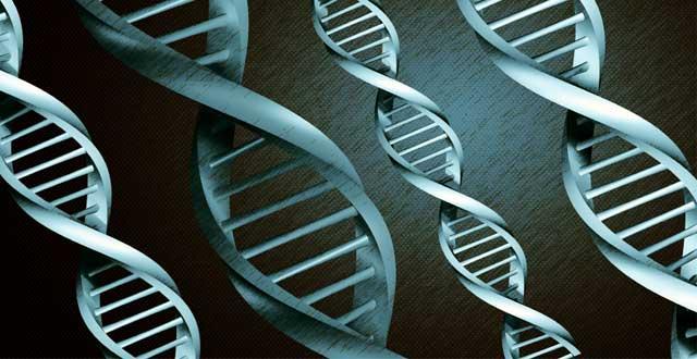 Conocer genetica enfermedades