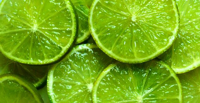 Conoce acerca limon