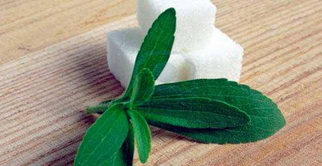 Beneficios stevia salud