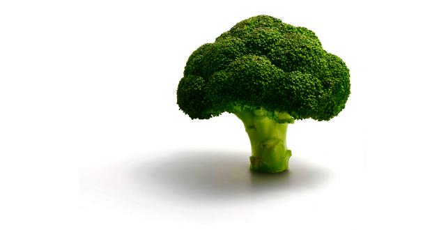 Conoce acerca brocoli