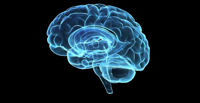 Leche enfermedades cerebro