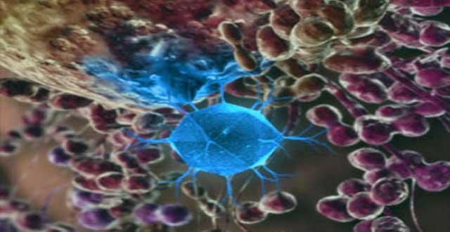 Nanodiamantes deteccion cancer
