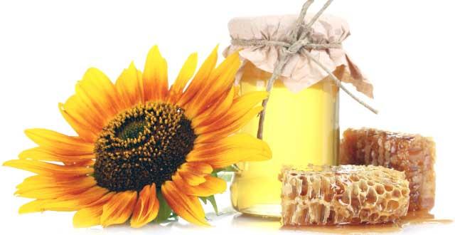 Beneficios miel dieta